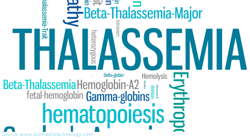 Introduction To Thalassemia – Symptoms And Dietary Recommendation