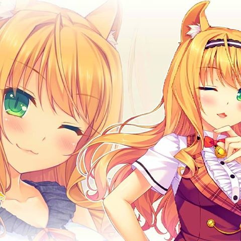 Nekopara Video game series
