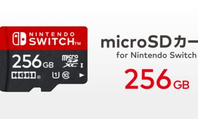 Nintendo Switch SD 256GB