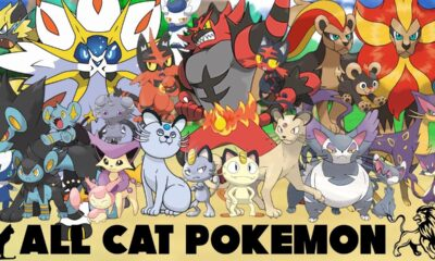 The Complete List of Cats in Pokemon