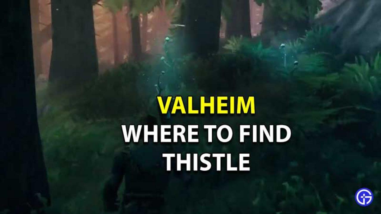 Valheim Thistle