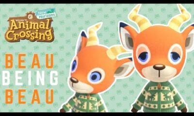 Beau Animal Crossing