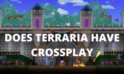 Is Terraria Cross Platform