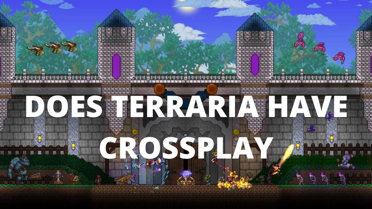 Is Terraria Cross Platform