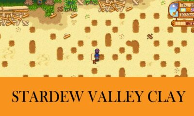 Clay in Stardew Valley