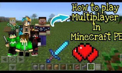 Play Multiplayer on Minecraft